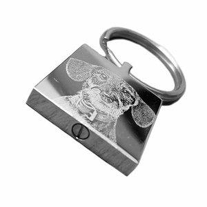 as sleutelhanger met foto van rvs